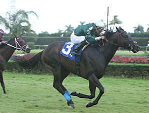Sincero wins the 2010 The Vid Stakes.