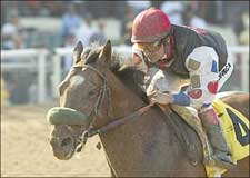 Solis Sweeps With Siren Lure in L.A. Handicap