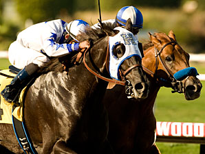 WV Derby Lures Near-Record Number of Noms