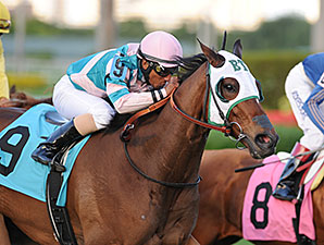 Sky Blazer Allowance, Gulfstream Park, January 16, 2015.