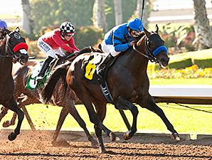 Sky Kingdom wins the 2014 American Flag Stakes.