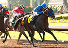 Promising Masochistic Favored in Los Al Mile