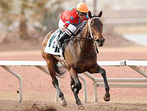 Sky Mom Soars to WinStar Oaks Triumph