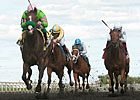 Trainer Casse Enters Four Fillies in Natalma