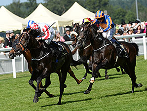 Slade Power wins the 2014 Diamond Jubilee Stakes.
