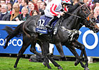 Slade Power, Royal Diamond Win at Ascot