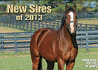 Slideshow: New Sires of 2013