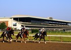Slideshow: 2014 Belmont Stakes Week