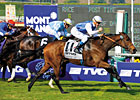 Slideshow: Breeders&#39; Cup Mile