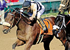Slideshow: Breeders&#39; Cup Sprint