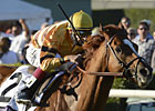 Slideshow: 2012 Horse of the Year Wise Dan
