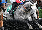 Slip Away Named Top Steeplechaser