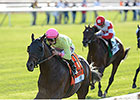 Chad Brown Duo Tops Full Million
