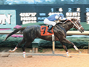 Retro Rebel: Smarty Jones Wowed in 2004