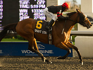 Smart Sting wins the 2012 Maple Leaf Stakes.