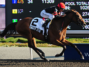 Smart Sting wins the Selene Stakes.