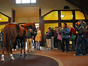 Smarty Jones Fans Bid Farewell