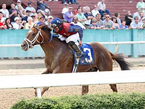Smiling Tiger wins the 2011 Count Fleet Handicap.