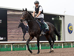 Smoking Sun preps April 23 for the QEII Cup.