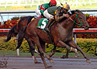Smooth Air Favored in Ohio Derby