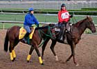 Smooth Air in Sharp Work for Ohio Derby