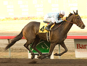 Spohler and Wygod's Smooth Performer carries jockey Martin Pedroza to victory in the $50,000 E.B. Johnston Stakes Saturday, September 12, 2009 at Fairplex Park.