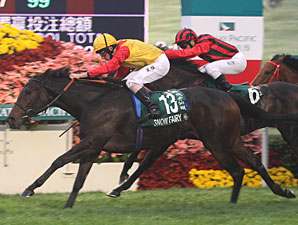 Snow Fairy Brilliant Again in Hong Kong Cup