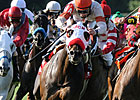 Snug Triumphs in Louisiana Cup Turf Classic