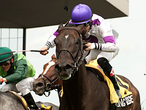 So Long George wins the 2013 Nijinsky Stakes.