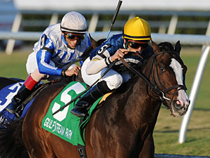 Soaring Empire Grabs Hal's Hope Win