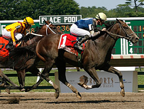 Graded Winner Soaring Empire Retired