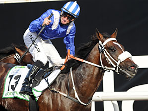 Soft Falling Rain Storms to Godolphin Mile