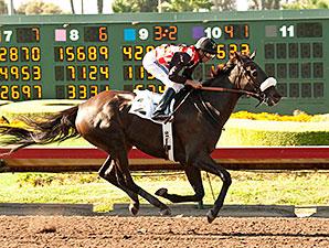 Soi Phet wins the 2014 Bertrando Stakes.