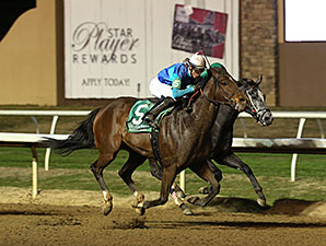 Solar Charge wins the 2014 Premiere Stakes.