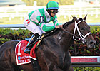 Soldat Wire-to-Wire in Fountain of Youth
