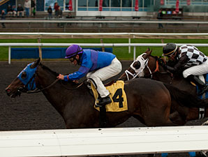 Something Extra wins the 2012 Mt. Sassafras Stakes.