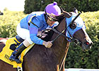 Something Extra Seeks More in Turf Sprint