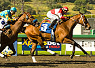 Soul City Slew &#39;Grande&#39; at Santa Anita