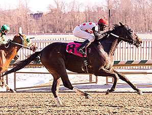 Souper Lucky wins an Allowance/Optional Claiming Race at Laurel on January 10, 2015.