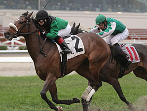 Southern Dude wins the 2013 Bayou St. John Stakes.