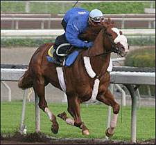 Declan's Moon Tightens Up for Santa Catalina
