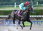 Speechify Goes for Grade in Mr. Prospector