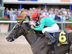 Speechify wins the Mr Prospector Stakes.
