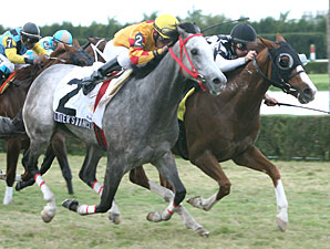 Spice Route Ekes Out Tropical Turf Win