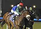 Splash Point Soaks Rivals in UAE 2000 Guineas