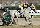 Sportswriter, Sunny Desert Win NYSS races