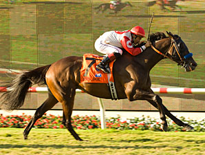 Spring House powers home in the Del Mar Handicap.