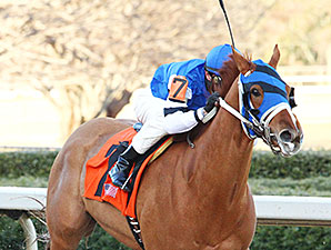 Spring Included wins the 2015 Spring Fever Stakes.