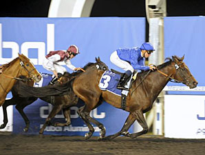 Spring of Fame wins the 2012 Dubal Casthouse Trophy.