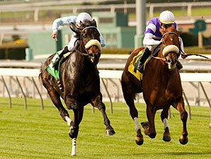 Spring Style wins the 2011 Robert J. Frankel Stakes.